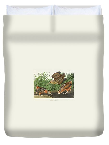 American Woodcock Duvet Cover by John James