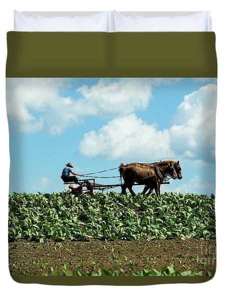 Amish Farmer With Horses In Tobacco Field Duvet Cover
