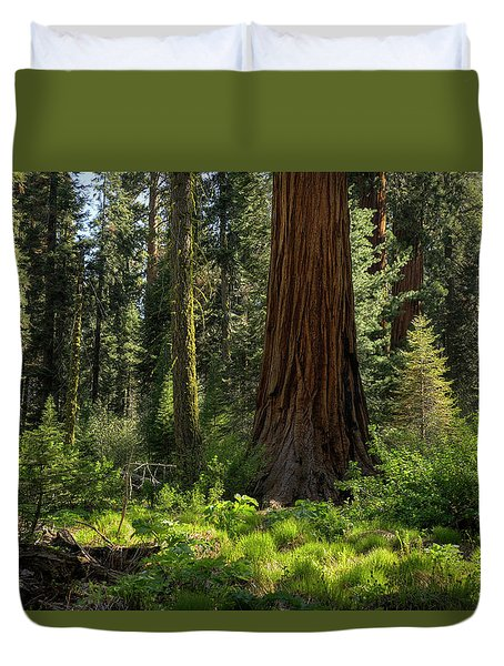Among Giants Duvet Cover by Sue Cullumber