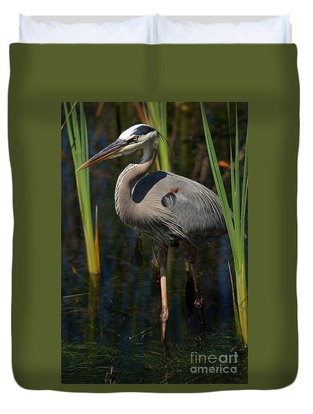 Duvet Cover featuring the photograph Among The Reeds by Pamela Blizzard