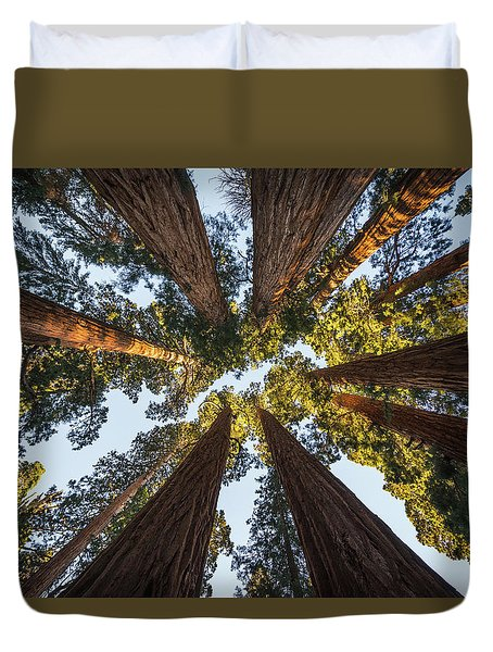 Amongst The Giant Sequoias Duvet Cover by Alpha Wanderlust