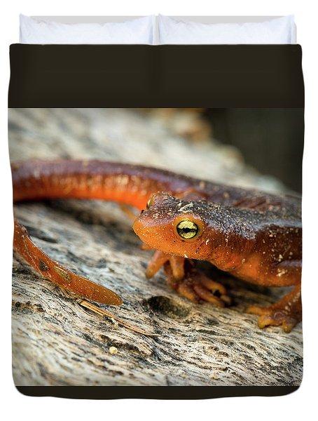 Amphibious Duvet Cover