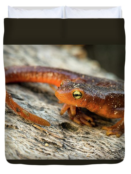 Amphibious Duvet Cover by Scott Warner