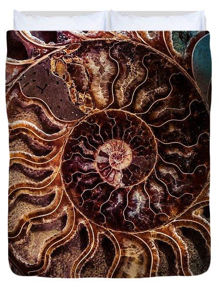 An Ancient Shell Duvet Cover