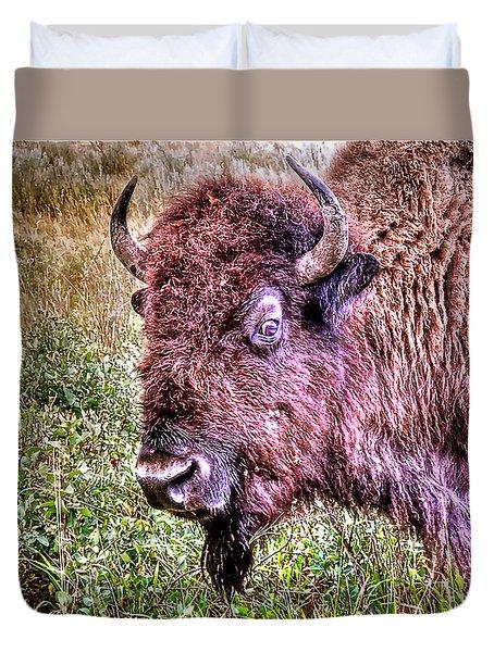 An Astonished Bison Duvet Cover