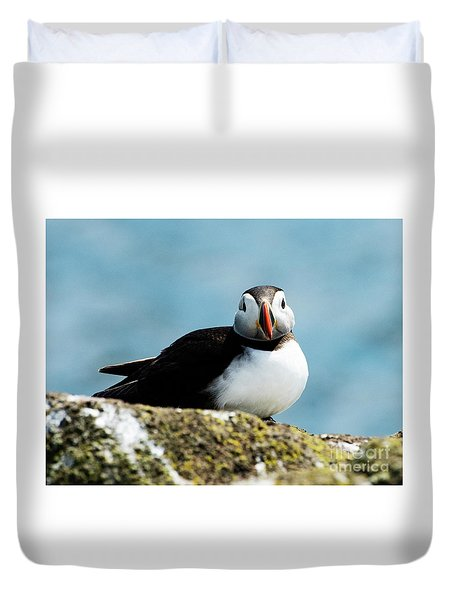 An Atlantic Puffin Duvet Cover