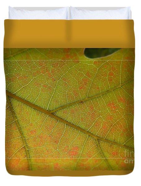 Duvet Cover featuring the photograph An Autumn Leaf by Jean Bernard Roussilhe