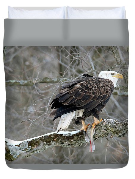 An Eagles Catch Duvet Cover by Brook Burling