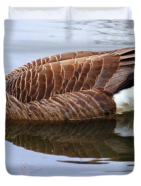 An Elegant Pose Duvet Cover by Frozen in Time Fine Art Photography