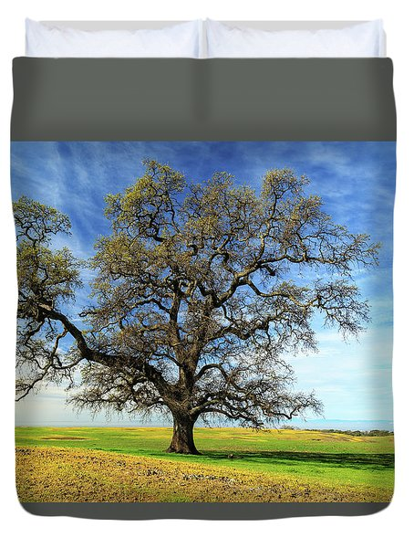 An Oak In Spring Duvet Cover by James Eddy