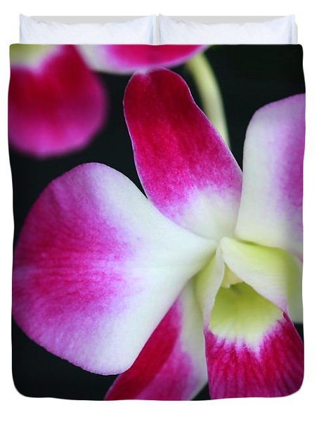 An Orchid Duvet Cover by Sabrina L Ryan
