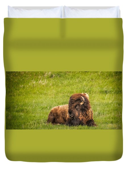 Duvet Cover featuring the photograph Ancient Bison by Rikk Flohr