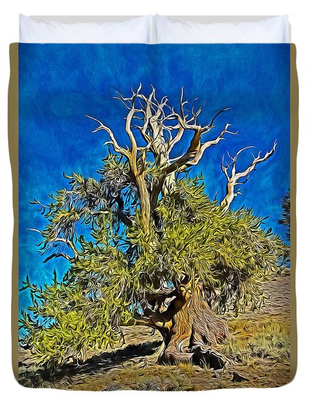Ancient Bristlecone Pine Duvet Cover