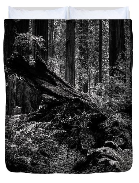 Duvet Cover featuring the photograph Ancient Forest Black And White by TL Mair