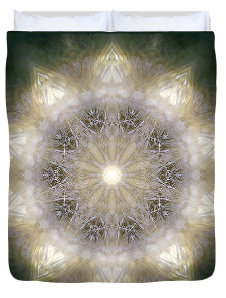 Ancient Light X Duvet Cover by Lisa Lipsett