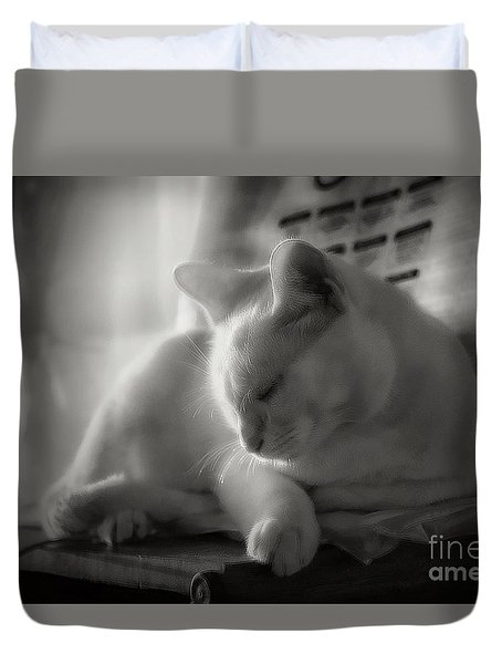 And The Sun Still Shines On My Cat Duvet Cover
