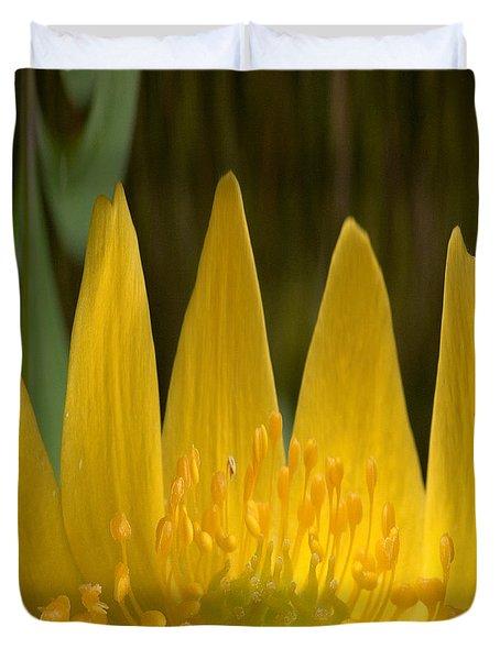Anemone Flames Duvet Cover by Jouko Lehto