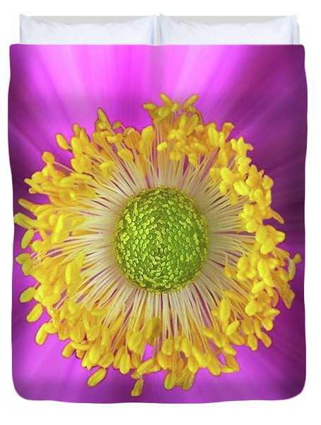 Anemone Hupehensis 'hadspen Duvet Cover by John Edwards