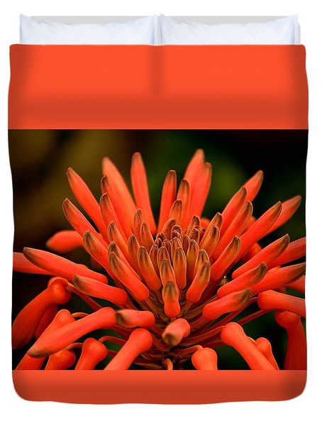 Anemone Or Peppers Duvet Cover by Bob Wall