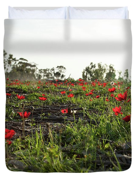 Duvet Cover featuring the photograph Anemones Forest by Yoel Koskas