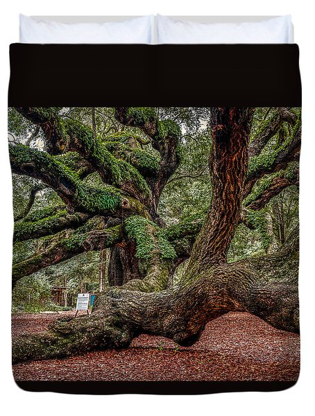 Angel Oak Duvet Cover by Doug Long