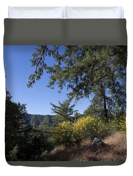 Angeles National Forest View Duvet Cover by Ivete Basso Photography