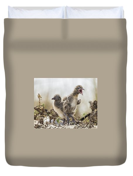 Duvet Cover featuring the photograph Angry Birds by Paula Porterfield-Izzo