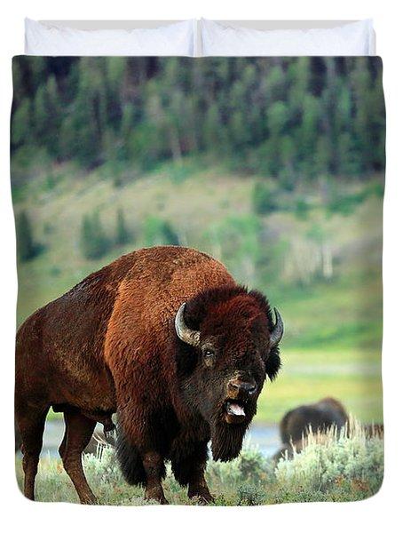 Angry Buffalo Duvet Cover by Todd Klassy