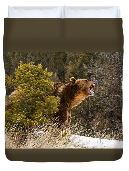 Angry Grizzly Behind Tree Duvet Cover