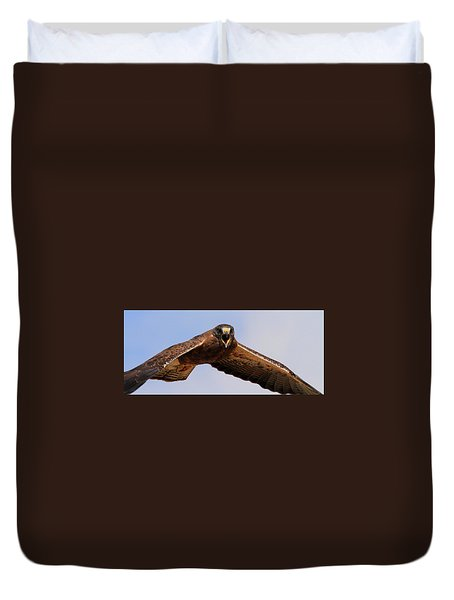 Angry Swainson's Hawk Duvet Cover