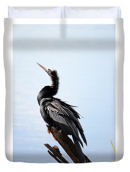 Anhinga Blues Duvet Cover