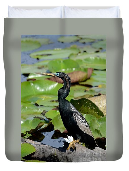 Anhinga In May  Duvet Cover