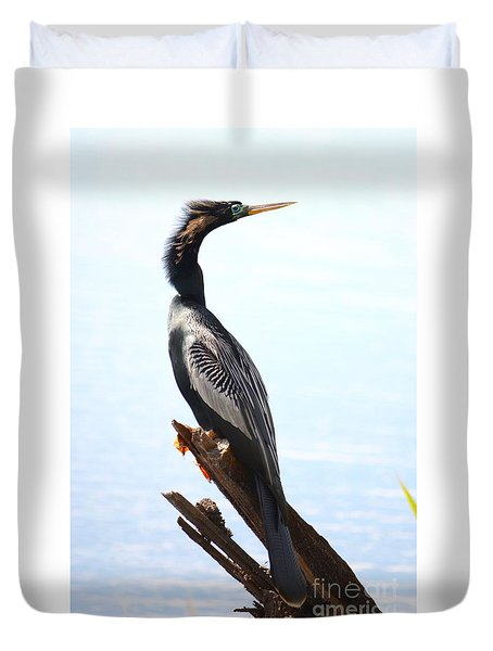 Duvet Cover featuring the photograph Anhinga's Pose  by Kathy Gibbons