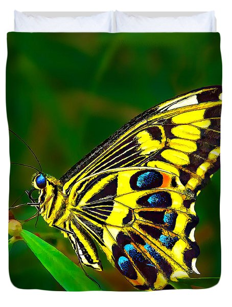 Anise Swallowtail Butterfly Duvet Cover