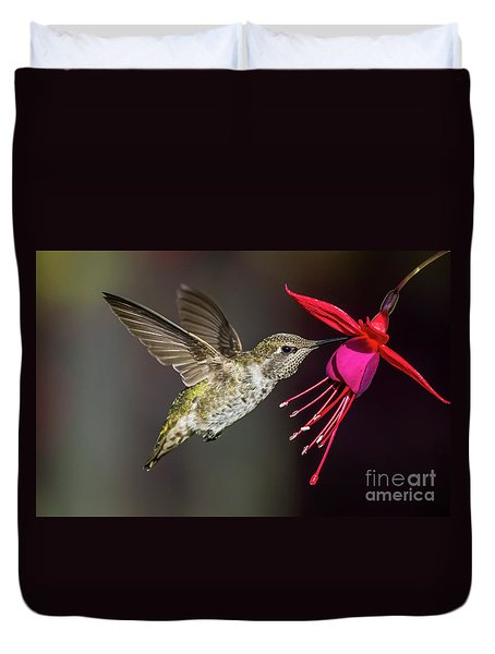 Anna Immature Hummingbird Duvet Cover
