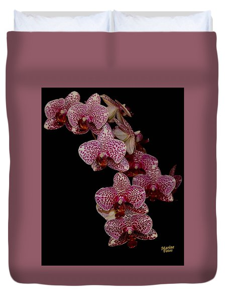 Anniversary Orchid Plant On Black Duvet Cover