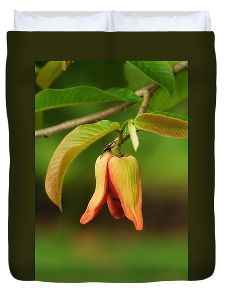 Annona Purpurea Flower Duvet Cover