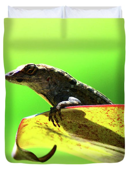 Anole In Green Duvet Cover