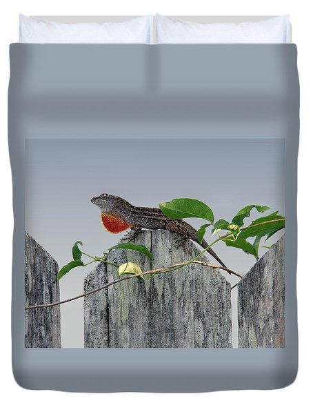 Duvet Cover featuring the photograph Anole On Fence by Richard Rizzo