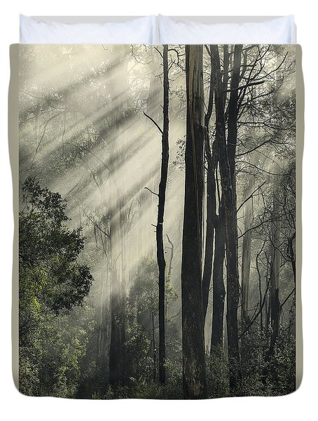 Anothen Duvet Cover by Andrew Paranavitana