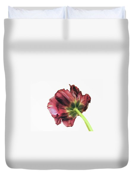 Another Point Of View Duvet Cover by AugenWerk Susann Serfezi