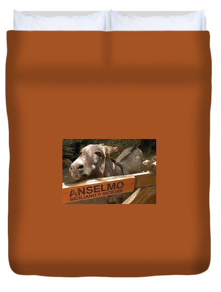 Duvet Cover featuring the photograph Anselmo by Dianne Levy