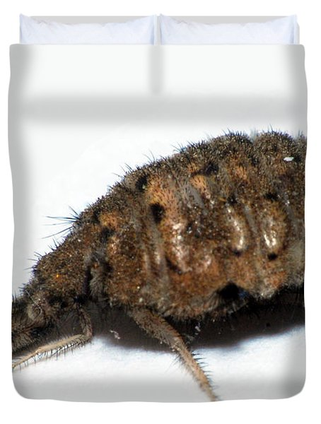 Ant Lion Duvet Cover