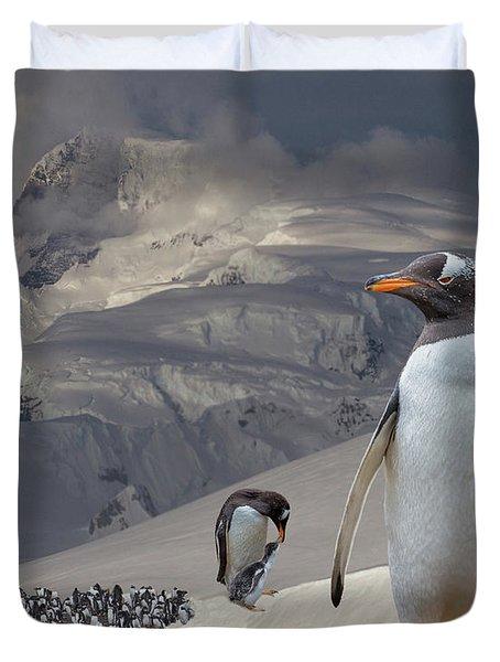 Antarctic Magesty Duvet Cover