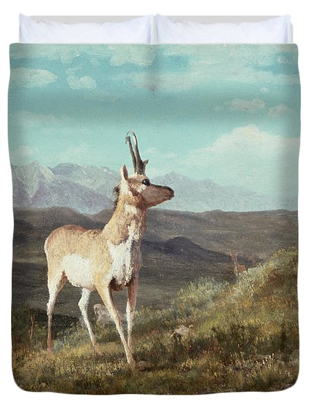 Antelope Duvet Cover by Albert Bierstadt
