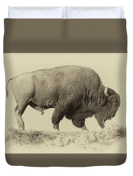 Antique Bison Duvet Cover