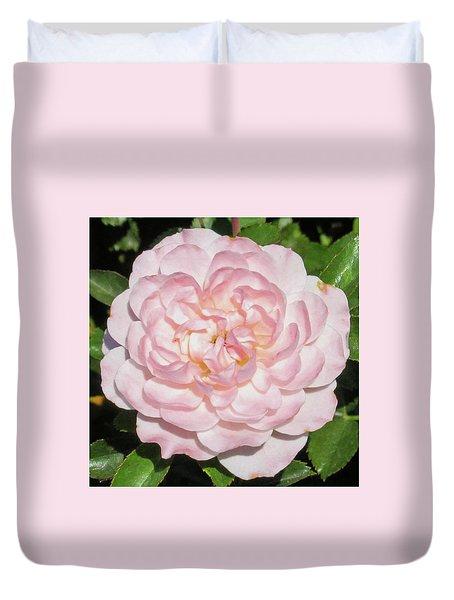 Antique Pink Rose Duvet Cover