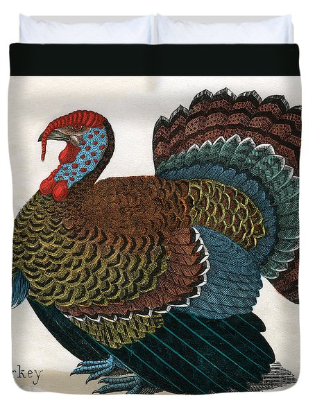 Antique Print Of A Turkey, 1859  Duvet Cover by American School