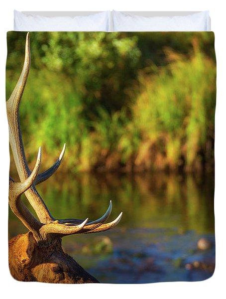 Antlers Of An Elk Duvet Cover