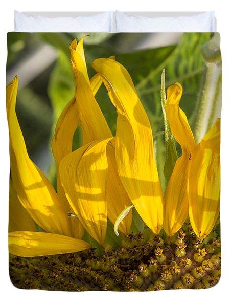 Ants On A Sunflower Duvet Cover